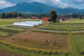 Biotop Gärtnerei – Juni 2018